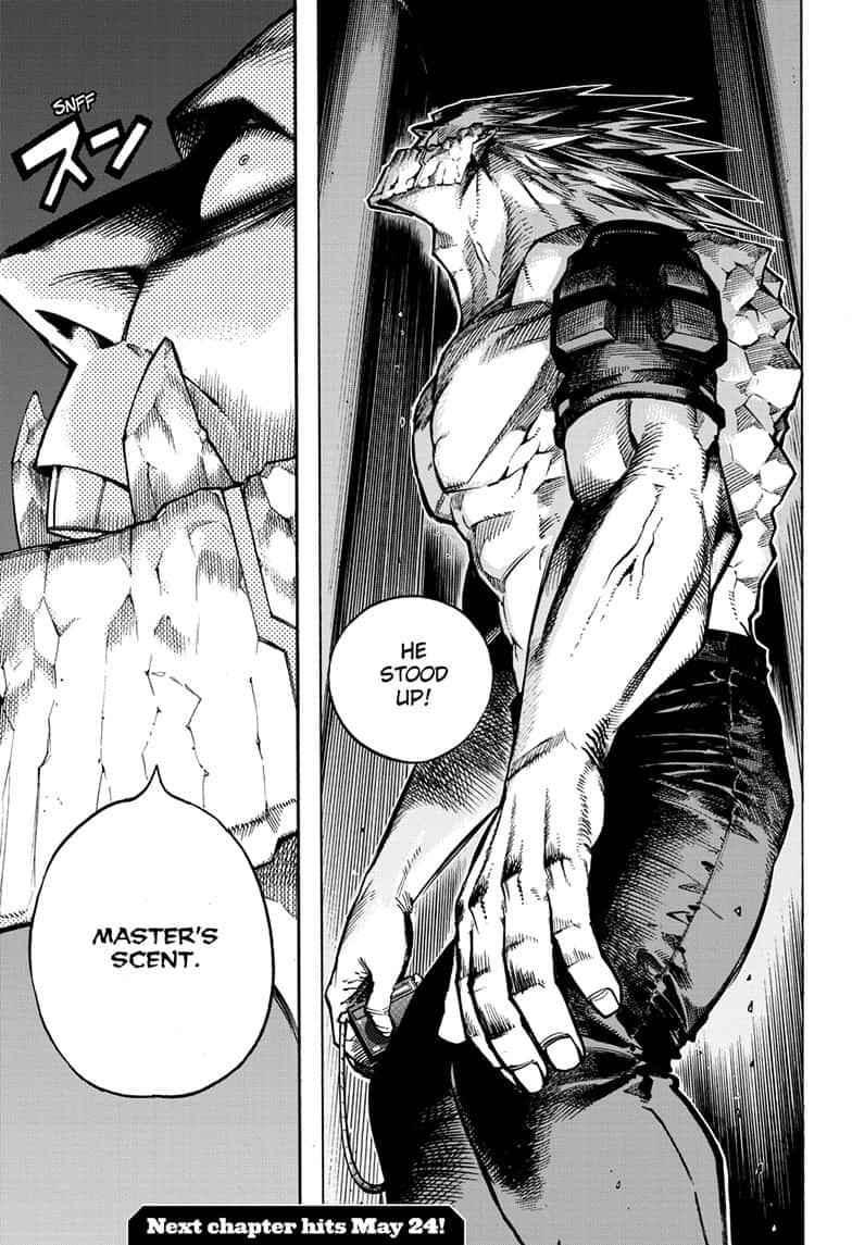 Boku no Hero Academia Chapter 271 Page 17